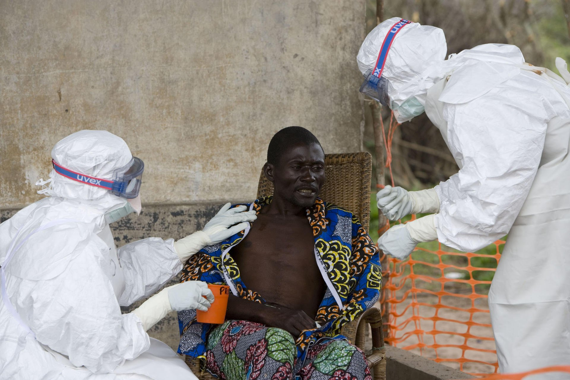 the origins types causes and effects of the ebola virus a modern day plague But in the modern day this paper will explore the origins, types, causes/effects, and what is being done to fight the spread of the ebola virus – the black.