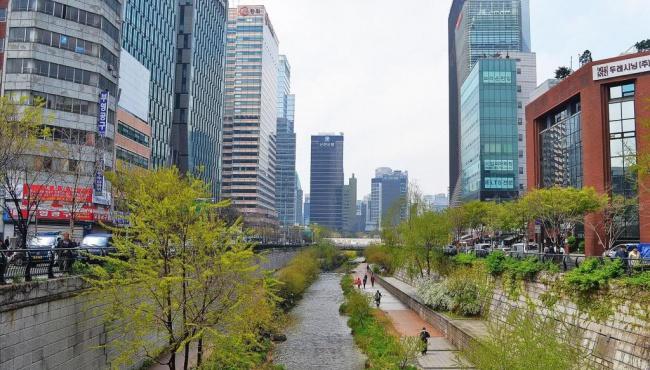 Южная Корея закрыла приграничные зоны с КНДР для туристов