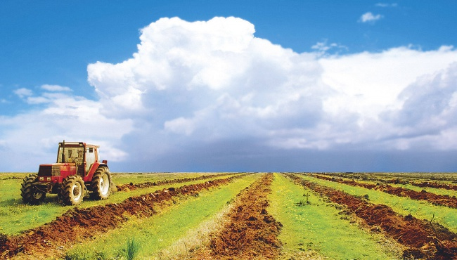 Павленко: ЕС запустил программу для сельхозпредпринимателей
