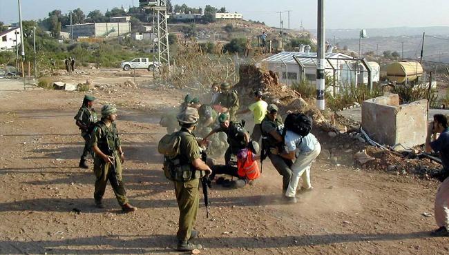 Манн: В Израиле тоже есть сепаратисты и почище украинских