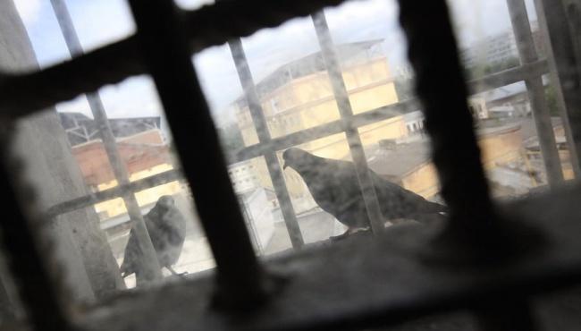 Израильские власти предупредили об уголовной ответственности за посещение проституток