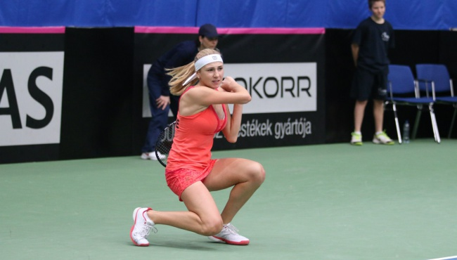 Украинские теннисисты выбыли из борьбы на австралийском турнире