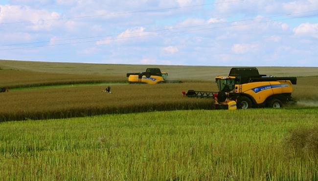 Украинский агробизнес станет лучшим в Европе