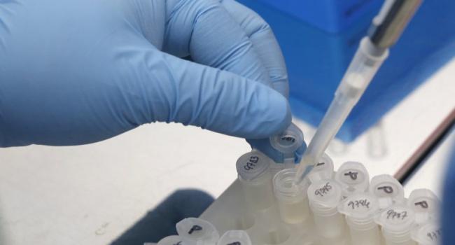 профилактика и лечение паразитов в организме человека