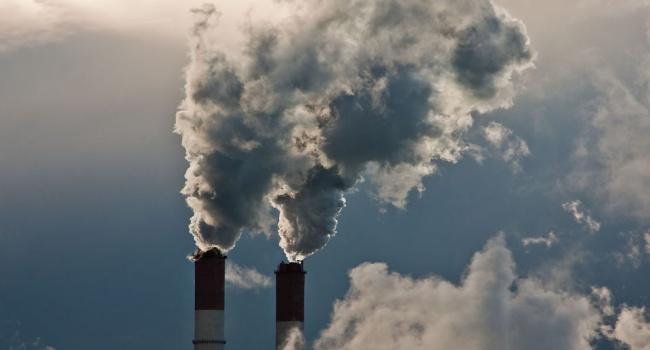 Ученые каждый четвертый человек умирает из-за плохой экологии