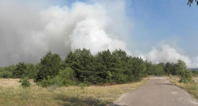 Пожар под Чернобылем: подробности
