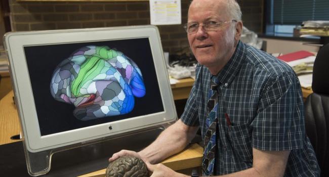 Ученые открыли сотню неизвестных областей вмозге человека