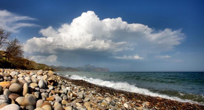 Заполвека практически 40% Черного моря стали непригодными для жизни— Ученые