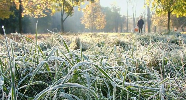 Синоптики: ВЛуганске вночь на16сентября ожидаются заморозки