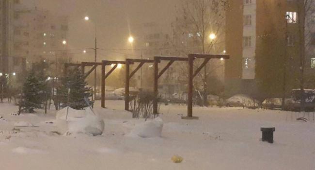 Социсети активно обсуждают необычные конструкции в московском парке