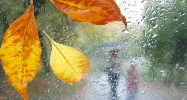 Дожди, мокрый снег исильный ветер— погода навыходных гродненцев непорадует
