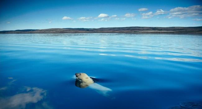 Из-за глобального потепления РФ потеряла несколько островов