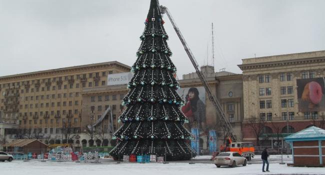Провинциальный город наПолтавщине украсил самую высокую живую елку вгосударстве Украина