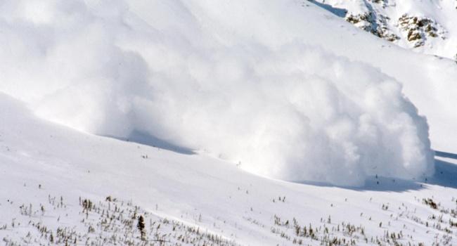 НаЗакарпатье две лавины сошли надорогу— ГСЧС предупреждает