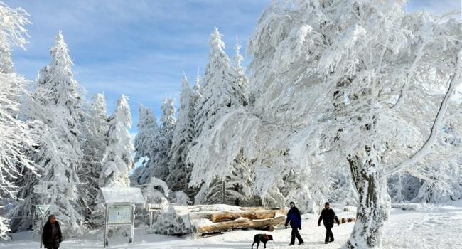 Жертвами сильных морозов вевропейских странах стали неменее 20 человек