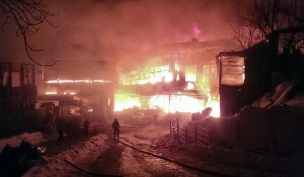ВБухаресте сгорел ночной клуб, 41 человек пострадал