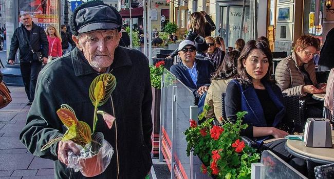 Блумберг составил рейтинг стран с самым высоким индексом старения