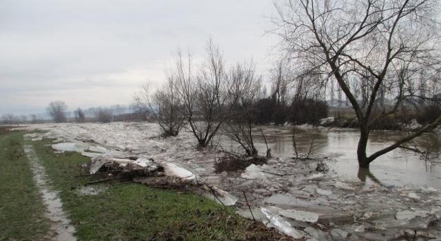 Неменее полтысячи дворов затопило вЗакарпатской области