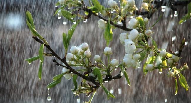 Украинцам стоит готовиться к резкой смене погоды,- синоптики