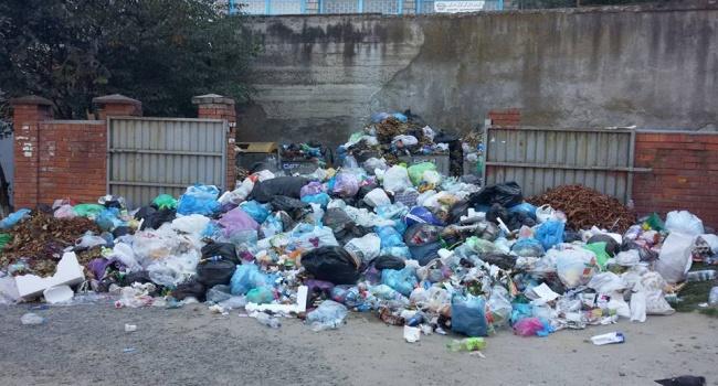 У Київській області виявили львівське сміття на території дитячого табору