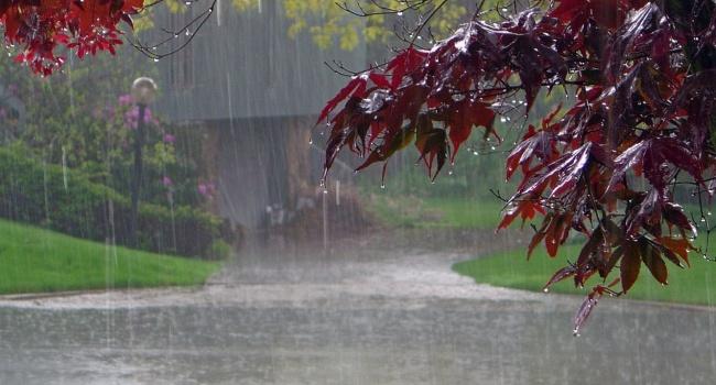 Синоптик: первый летний день принесет грозы и похолодание