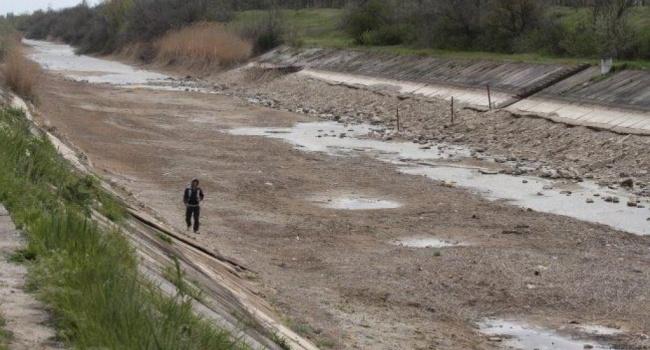 Волонтер: После ухода россиян из Крыма в Украину вернется Крым с разграбленными музеями, а вместо почвы будет соль