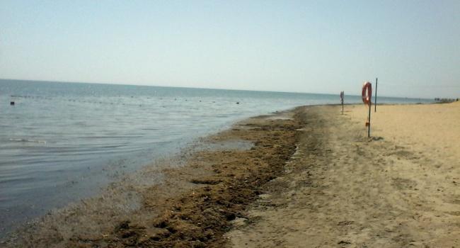 «Жара, вонь и тина, а еще отсутствие туристов», - в сети показали известный крымский пляж
