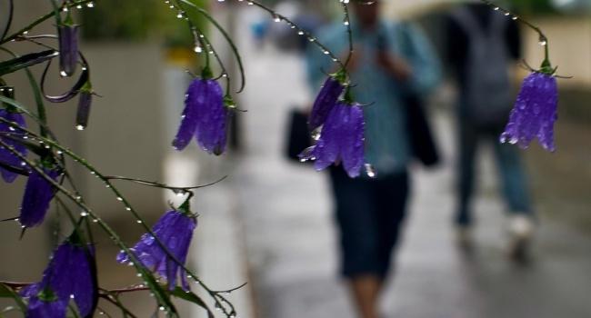 Сегодня вгосударстве Украина будет очень жарко, кое-где пройдут грозовые дожди (КАРТА)— Синоптик