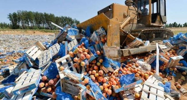 РФзадва года уничтожила около 17 тыс. тонн санкционных продуктов