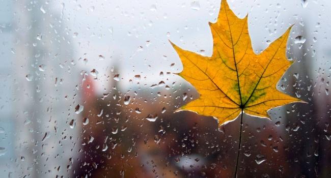 Осень уже близко: прогноз на 2 сентября