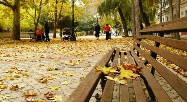 Лето возвращается: сегодня повсей Украине солнечная итеплая погода