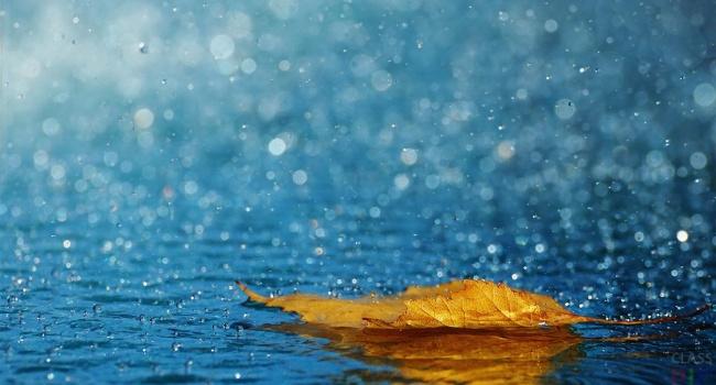 Похолодание идождь. Синоптик поведала, какая погода вКиеве предполагается завтра