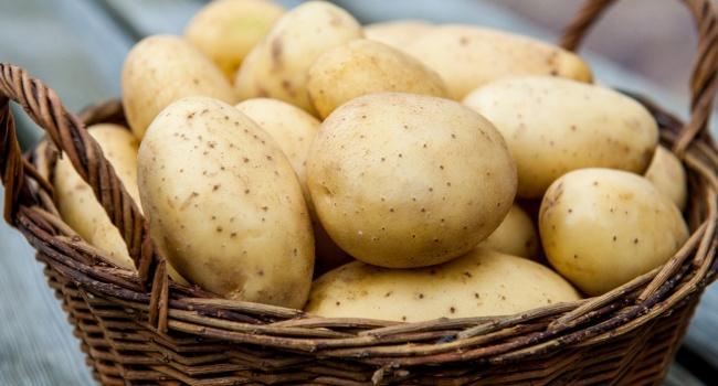 Эксперты рассказали, когда нужно ждать рекордных цен на картофель