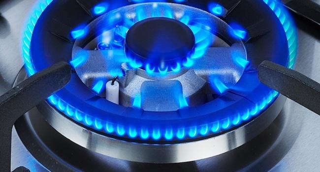ВЕС назвали условия для создания полноценного газового хаба вУкраинском государстве