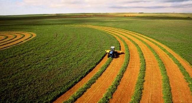 Иран желает арендовать земли сельхозназначения вУкраинском государстве