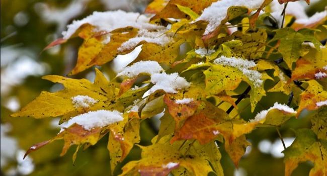 Вгосударстве Украина объявлено штормовое предупреждение: обещают ливни имокрый снег