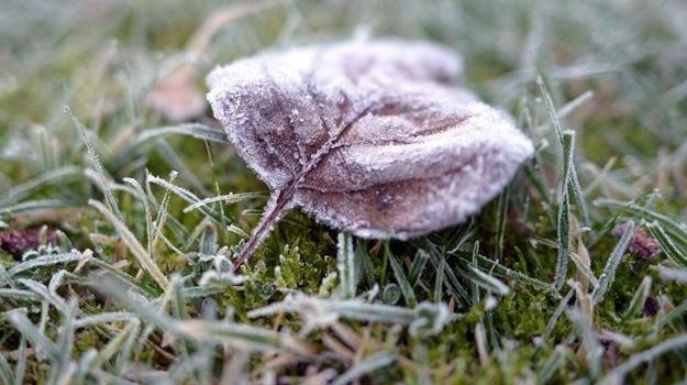 Всреду синоптики обещают похолодание, вКиеве без осадков