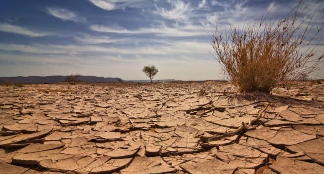 Ученые борьба с глобальным потеплением обернется катастрофой для Земли