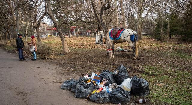 «Это не центр, а убожество», - в сети появились фото крымской столицы