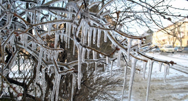Кульбида сказал, когда можно ожидать определенного намека навесну— Зима не постоянна