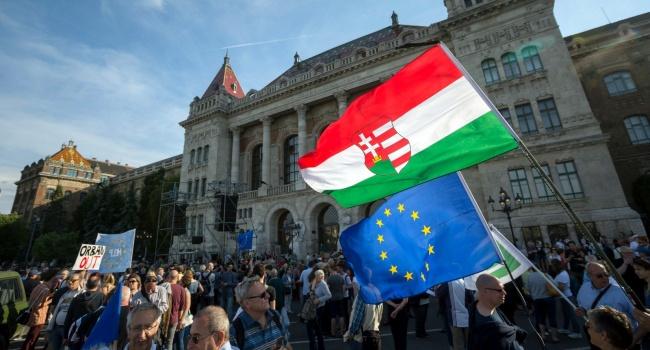 Воевавший за«ДНР» венгр избежал тюрьмы