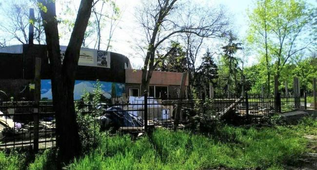 В Мариуполе демонтировали зоопарк с погибающими птицами