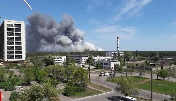 Под Северодонецком загорелось около 5 гектаров леса