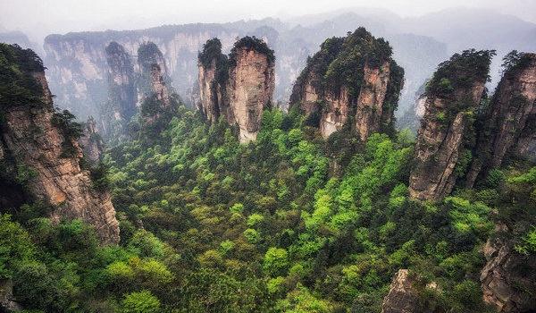 В Китае нашли земной «Аватар»