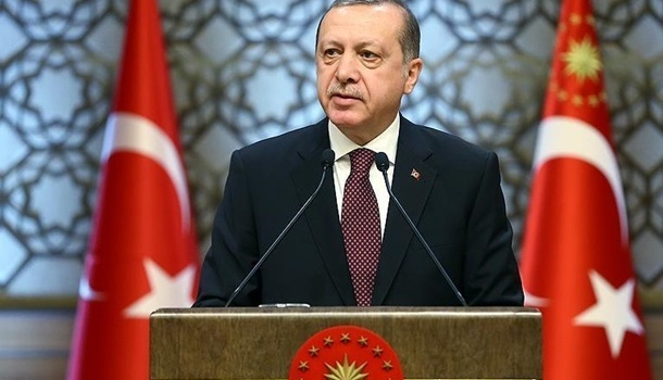 Эрдоган раскритиковал решение австрийских властей о закрытии мечетей