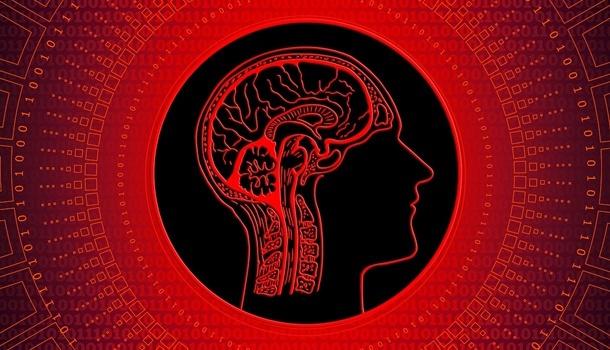 Ученые заявили о постепенном снижении уровня IQ у человечества