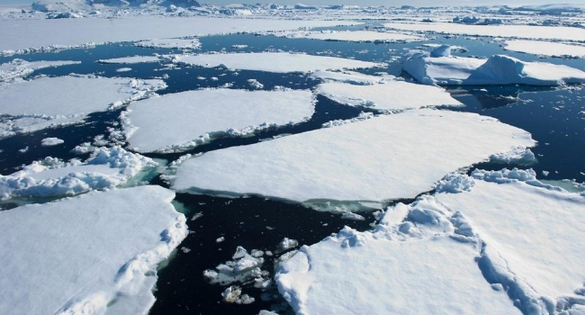 Ученые бьют тревогу из-за ускорения таяния льдов в Антарктиде