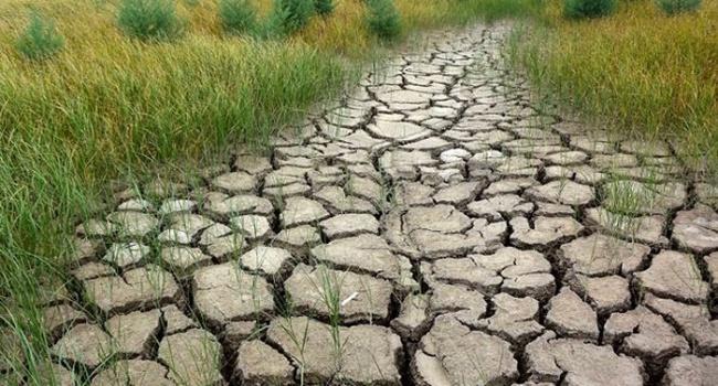 Оккупанты предложили крымчанам свой способ борьбы с засухой: «надейтесь на дождь»