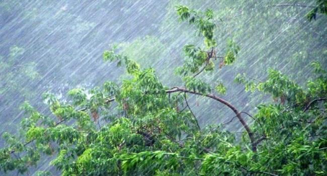 Над Украиной крутится циклон, - синоптик рассказала о погоде 20 июля