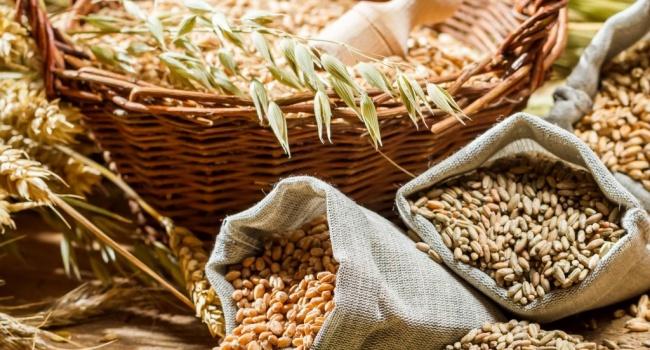 Наэкспорте зерновых Украина заработала неменее 6 млрд долларов